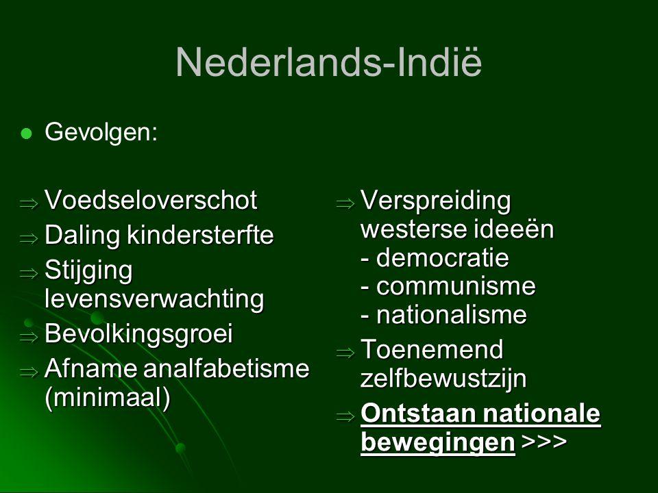 Nederlands-Indië Voedseloverschot Daling kindersterfte
