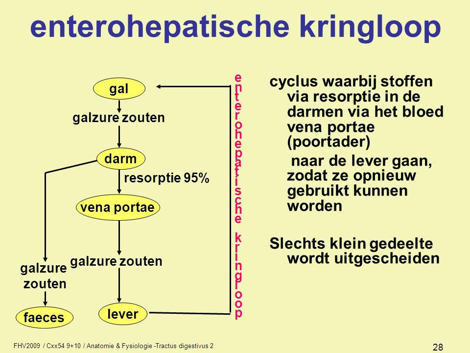 enterohepatische kringloop