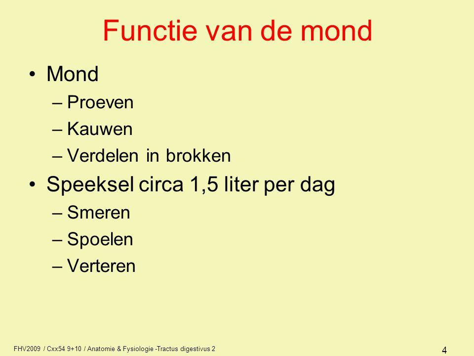 functie duodenum