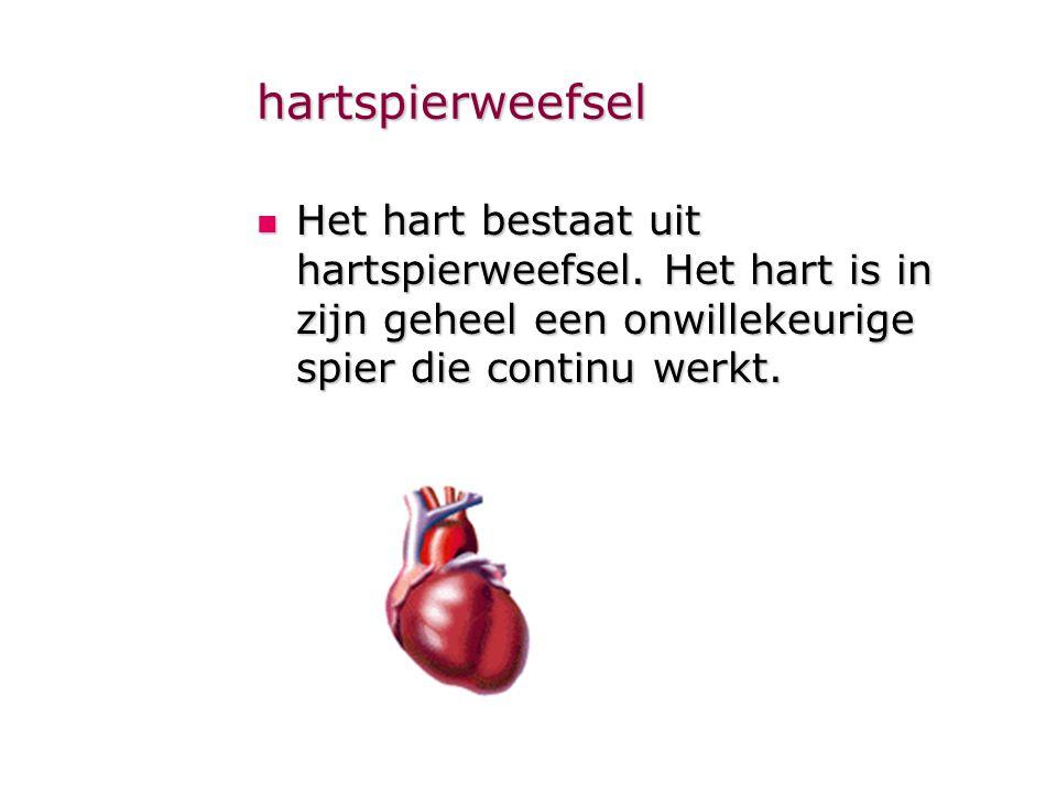 hartspierweefsel Het hart bestaat uit hartspierweefsel.