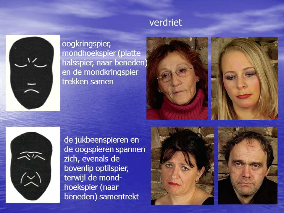verdriet oogkringspier, mondhoekspier (platte halsspier, naar beneden) en de mondkringspier trekken samen.