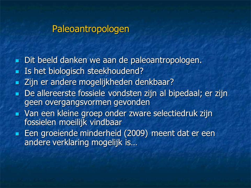 Paleoantropologen Dit beeld danken we aan de paleoantropologen.