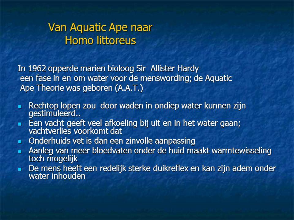 Van Aquatic Ape naar Homo littoreus