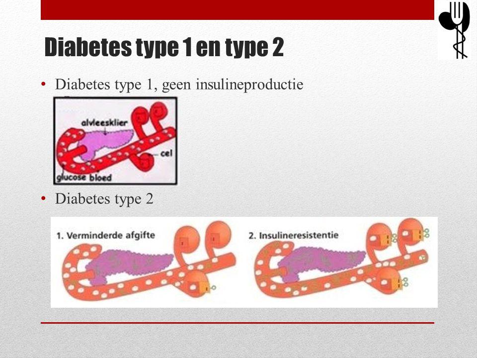 Diabetes type 1 en type 2 Diabetes type 1, geen insulineproductie