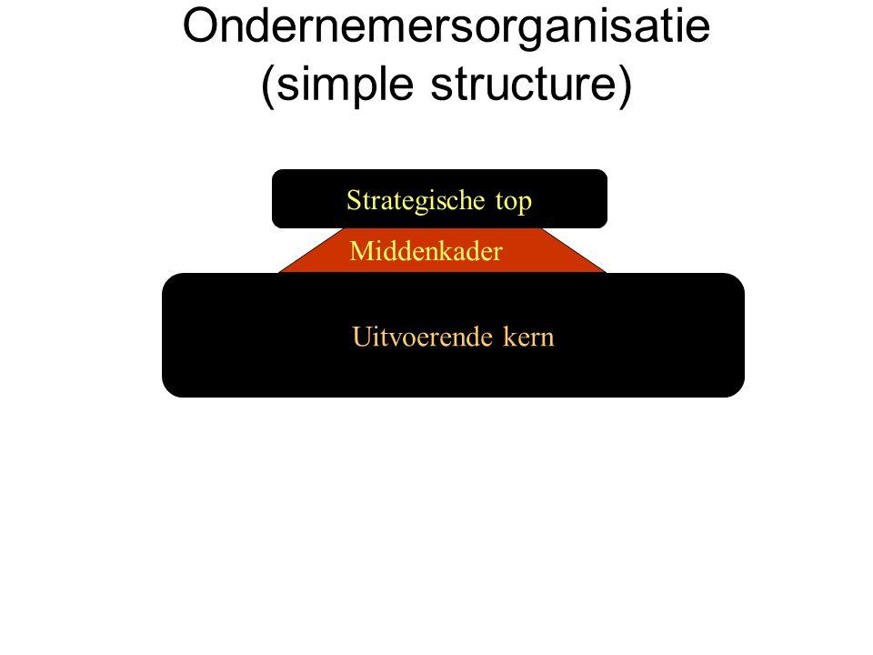 Ondernemersorganisatie (simple structure)
