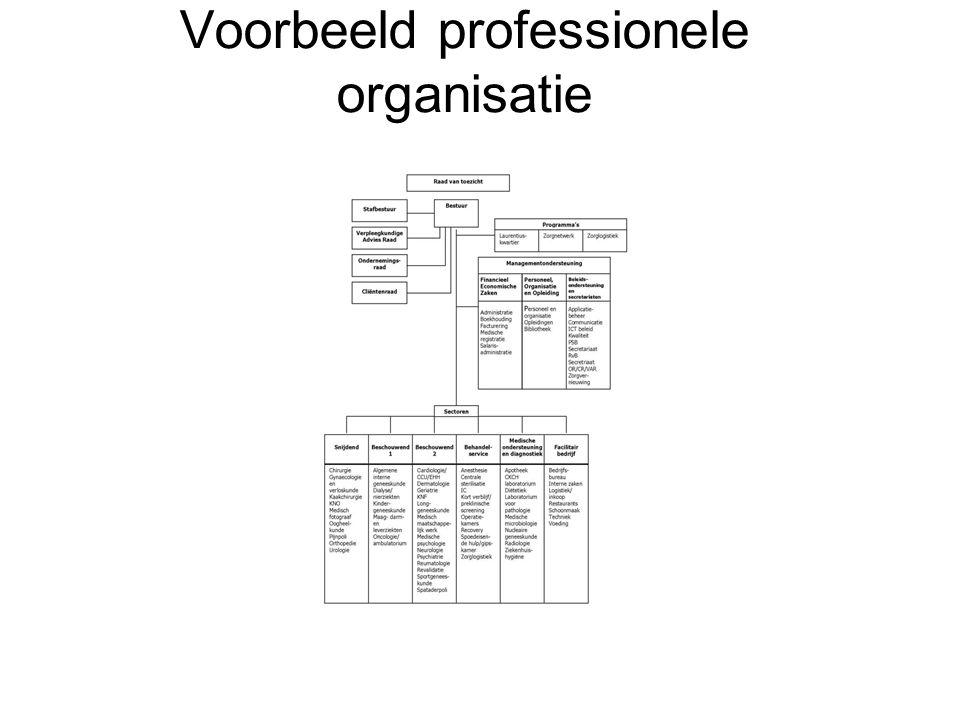Voorbeeld professionele organisatie