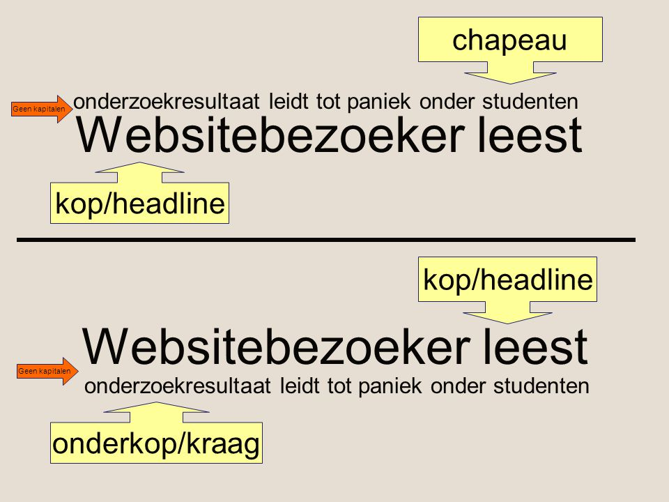 Websitebezoeker leest