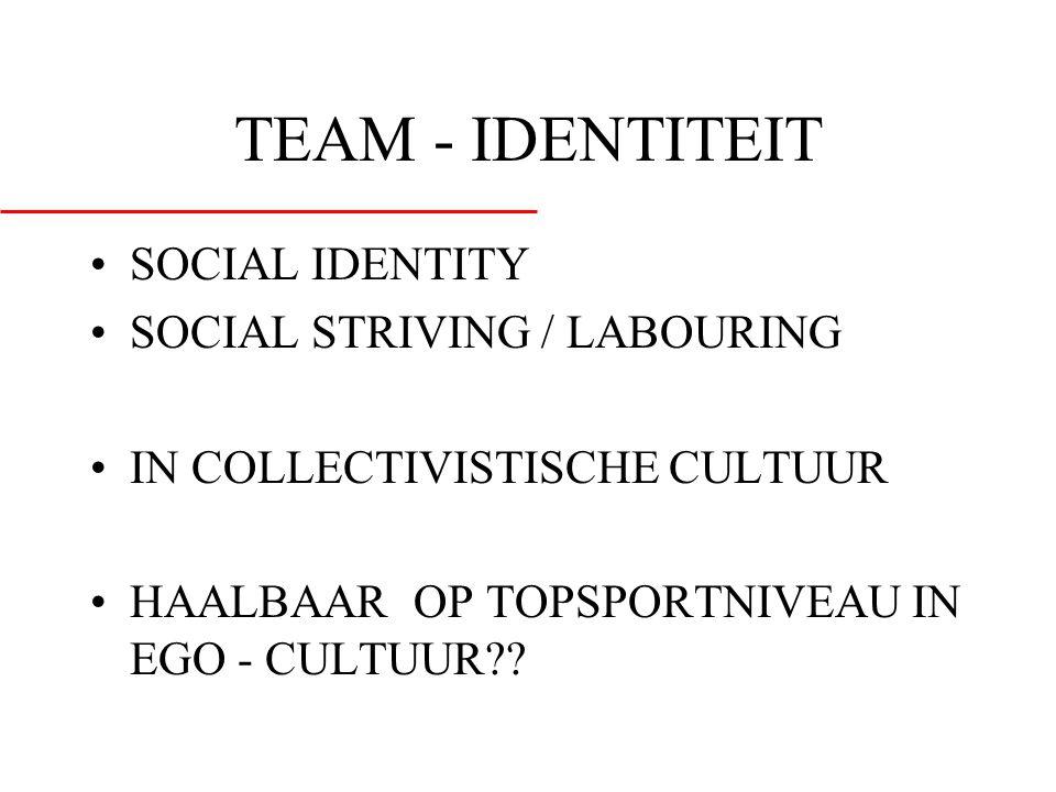 TEAM - IDENTITEIT SOCIAL IDENTITY SOCIAL STRIVING / LABOURING