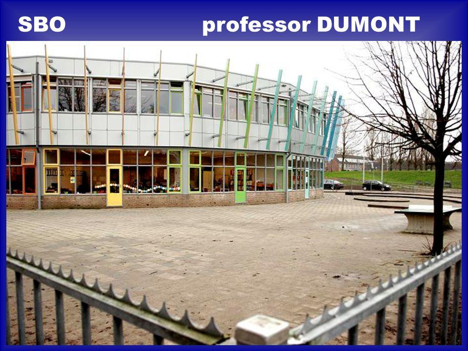 SBO professor DUMONT