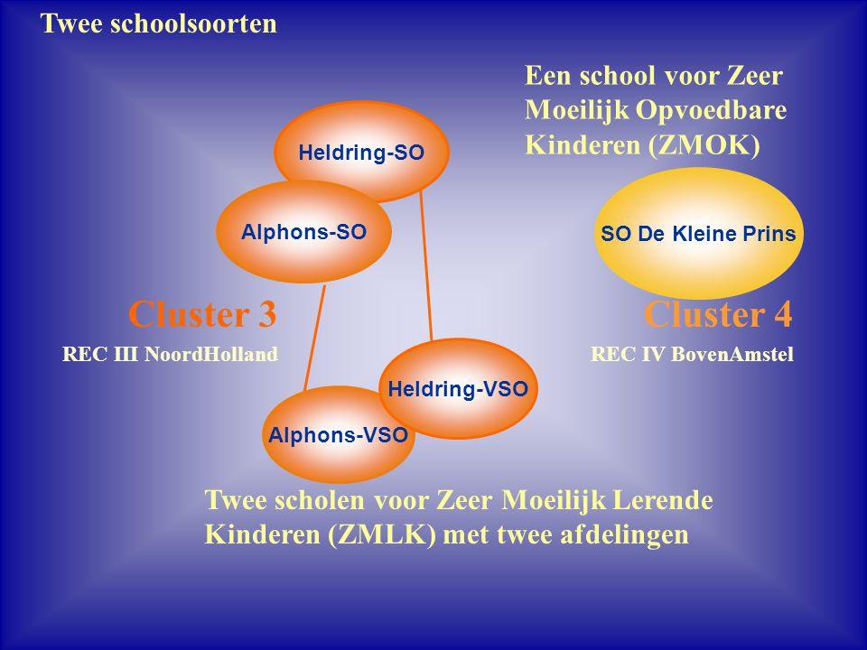 Cluster 3 Cluster 4 Twee schoolsoorten