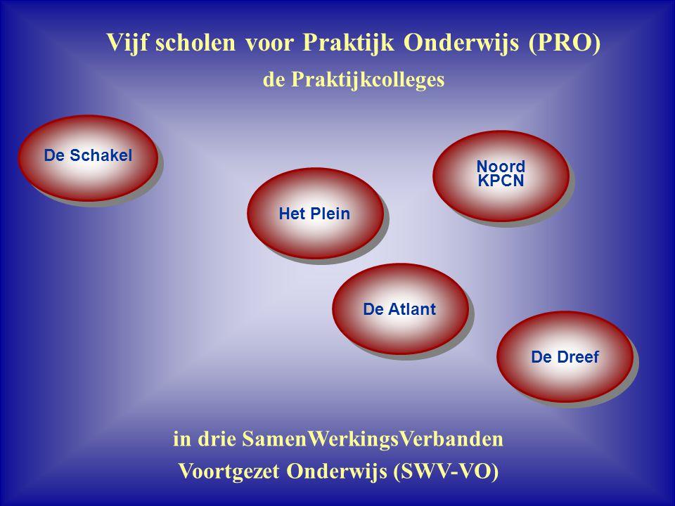 Vijf scholen voor Praktijk Onderwijs (PRO)