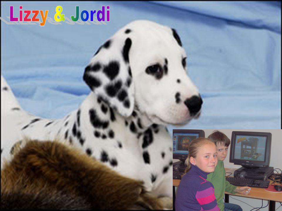 Lizzy & Jordi