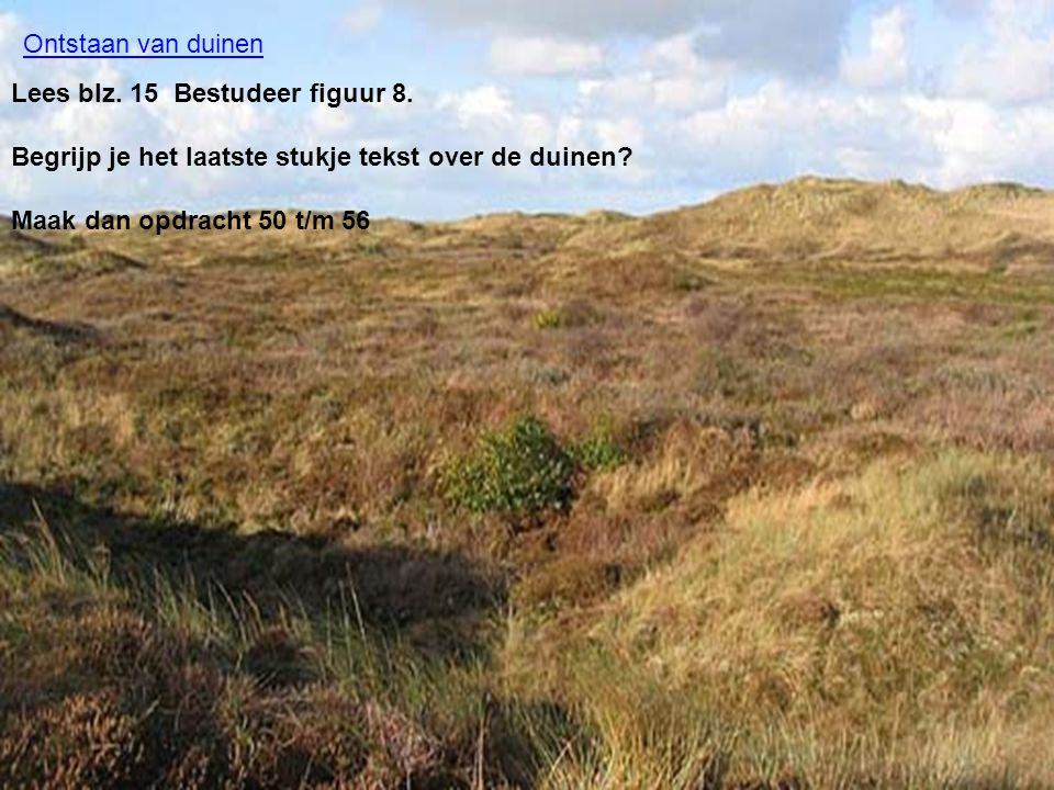 Ontstaan van duinen Lees blz. 15 Bestudeer figuur 8. Begrijp je het laatste stukje tekst over de duinen