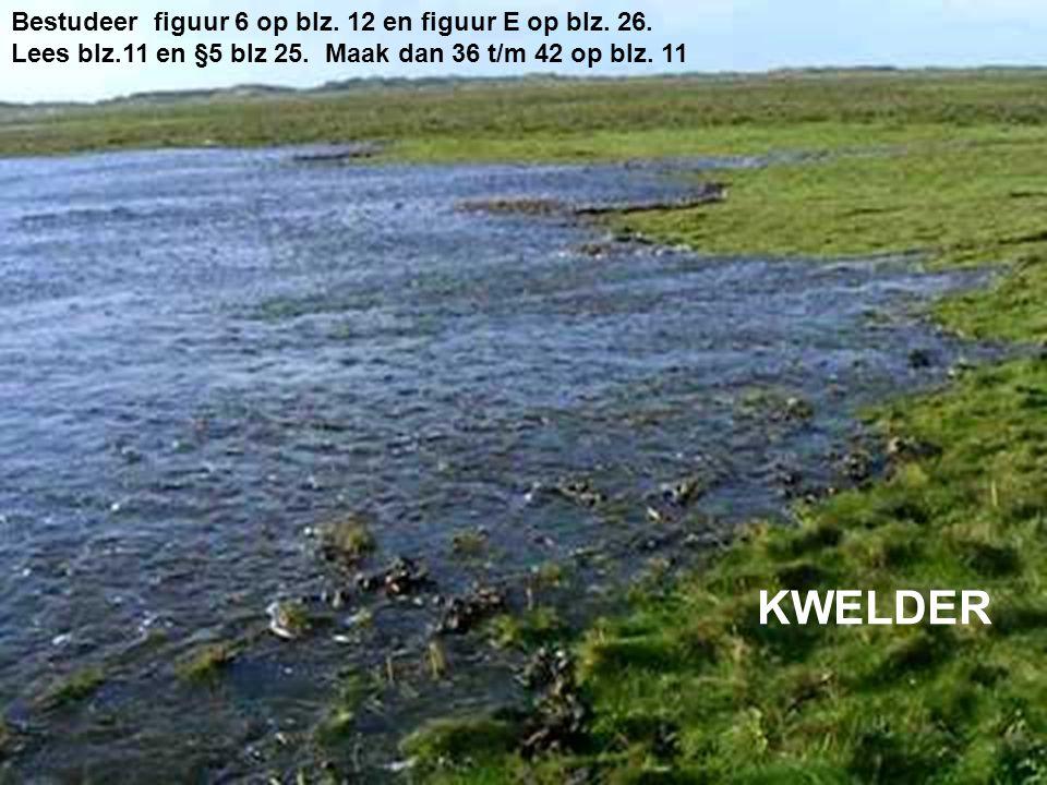 KWELDER Bestudeer figuur 6 op blz. 12 en figuur E op blz. 26.