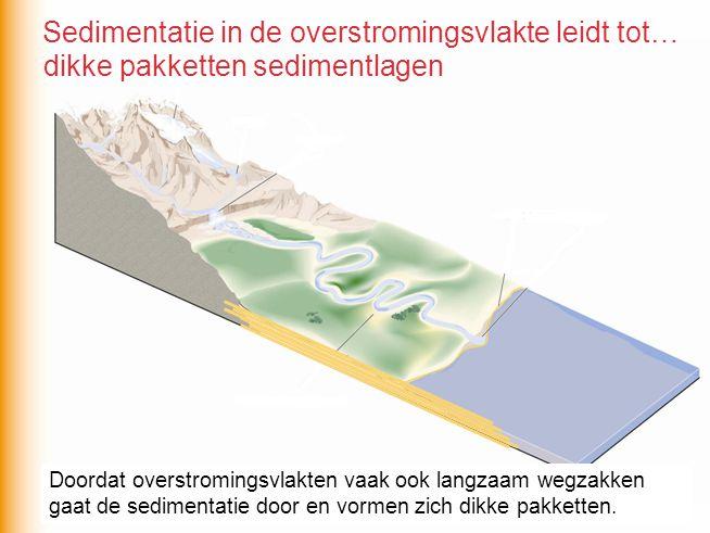 Sedimentatie in de overstromingsvlakte leidt tot…