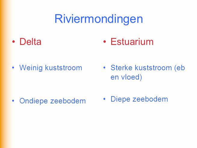 Riviermondingen Delta Estuarium Weinig kuststroom Ondiepe zeebodem