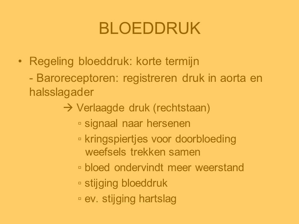 BLOEDDRUK Regeling bloeddruk: korte termijn