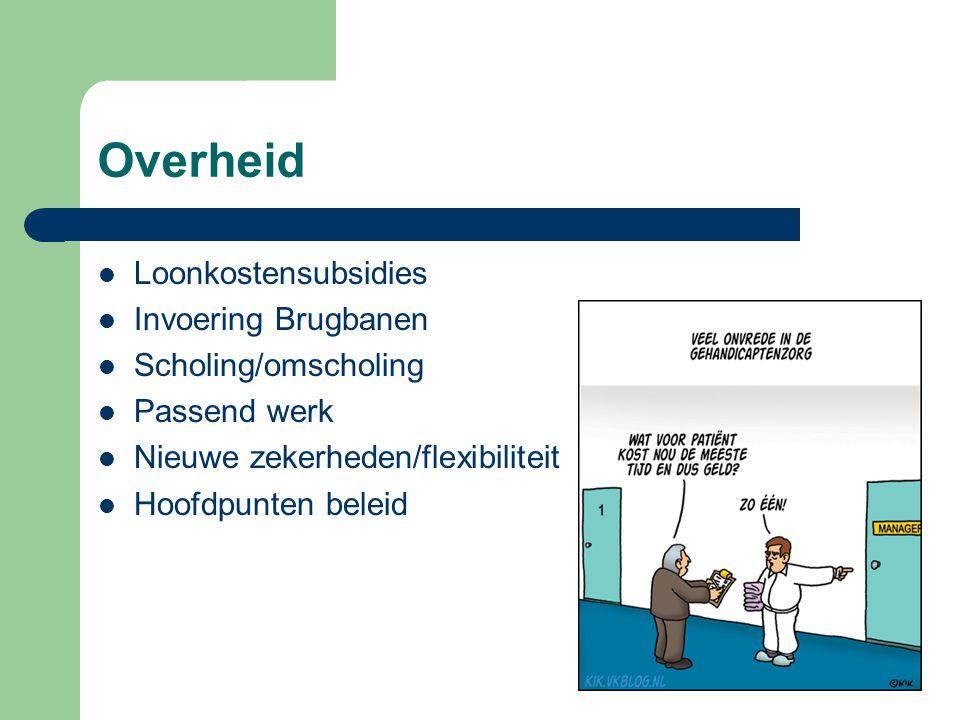 Overheid Loonkostensubsidies Invoering Brugbanen Scholing/omscholing
