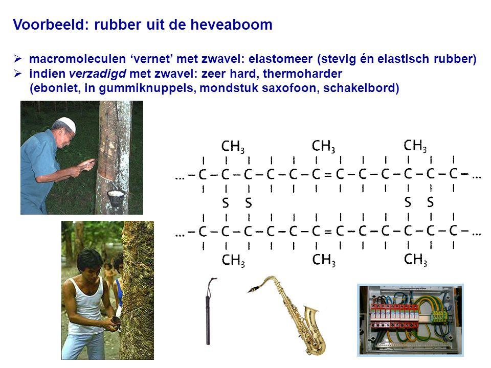 Voorbeeld: rubber uit de heveaboom