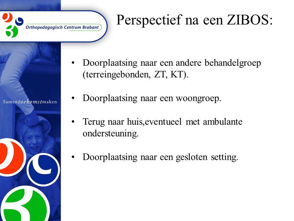 Perspectief na een ZIBOS: