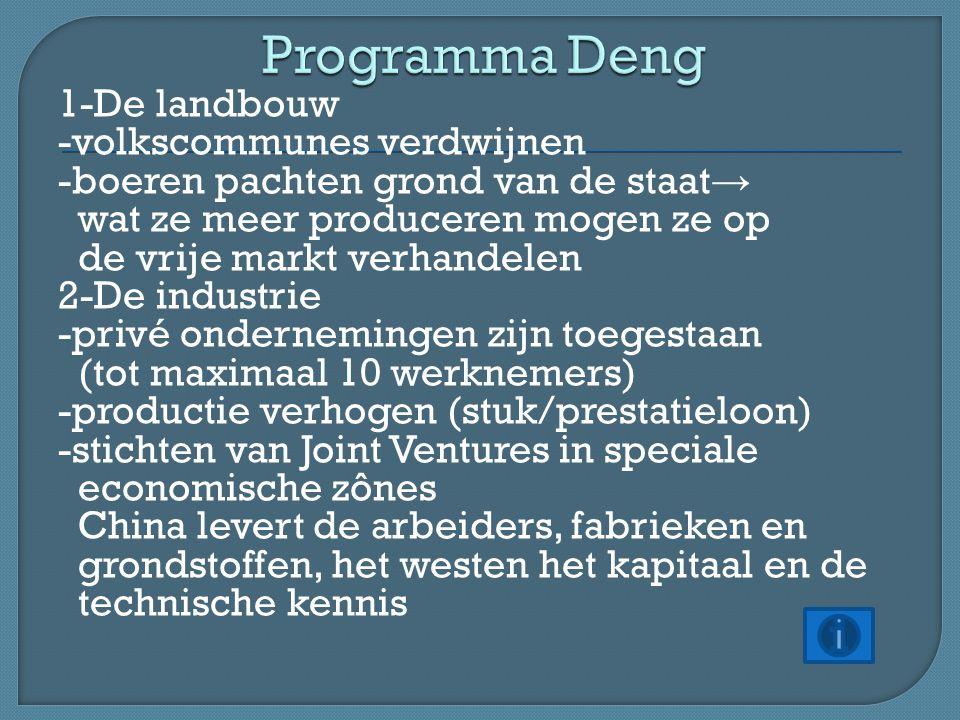 Programma Deng