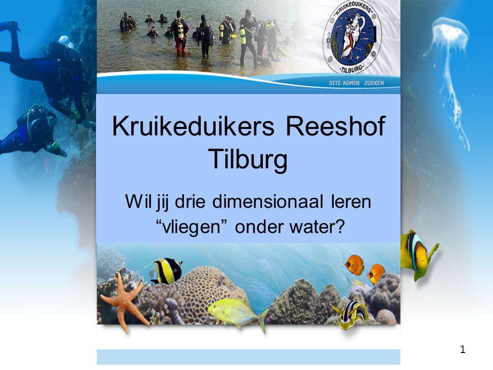 Kruikeduikers Reeshof Tilburg