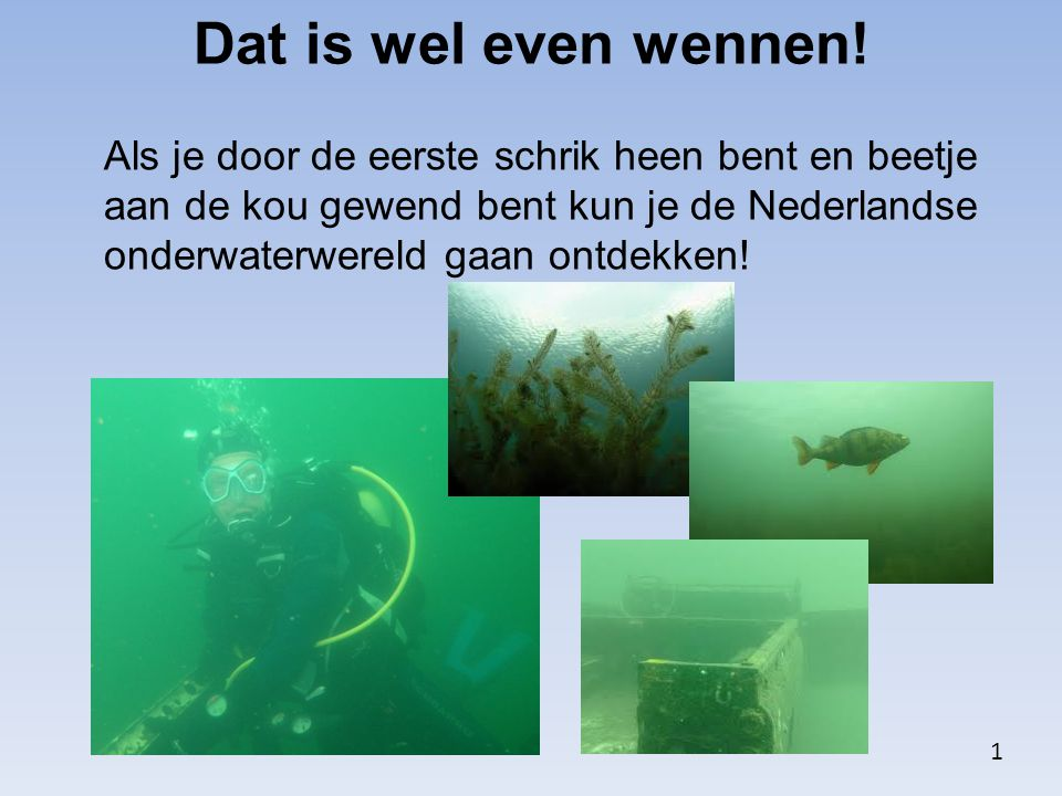 Dat is wel even wennen!