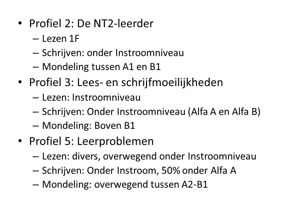 Profiel 2: De NT2-leerder