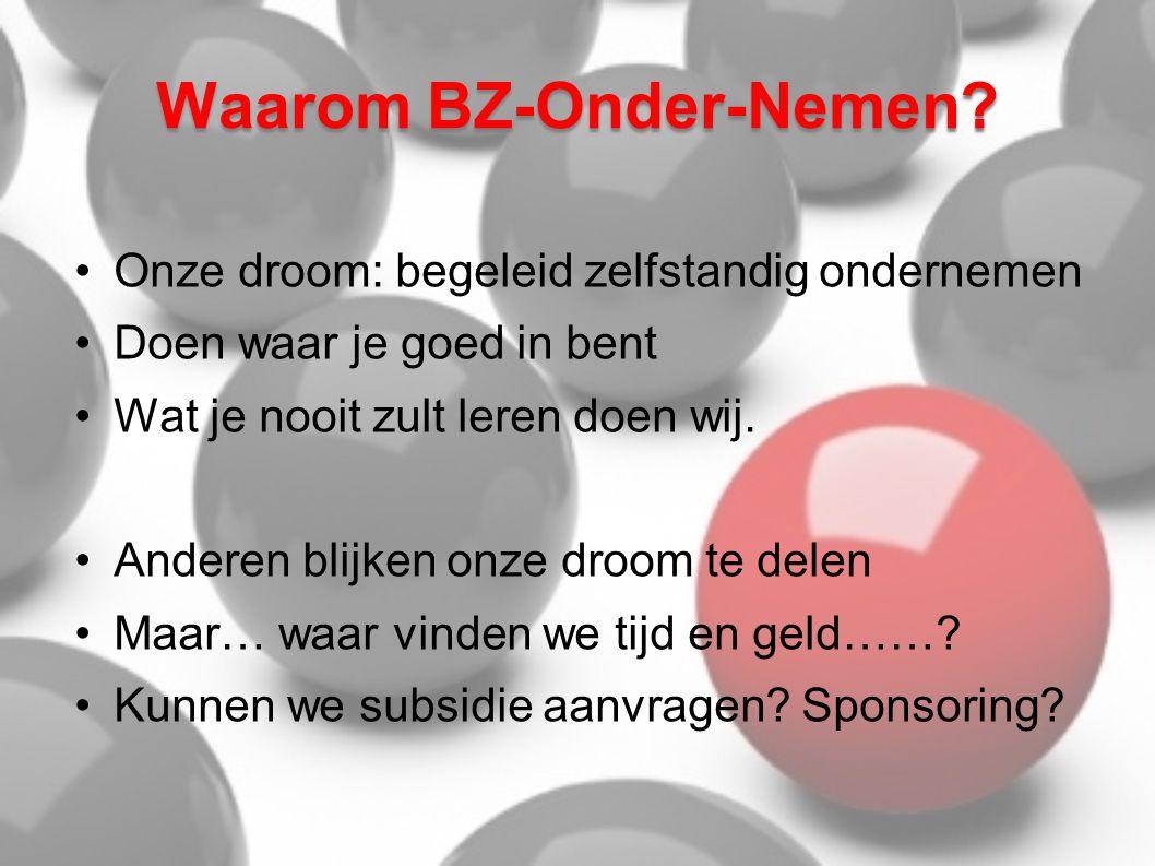 Waarom BZ-Onder-Nemen