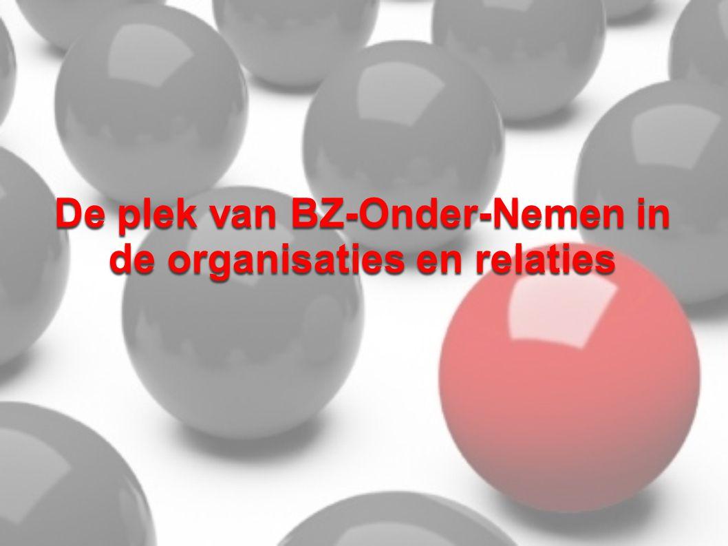 De plek van BZ-Onder-Nemen in de organisaties en relaties