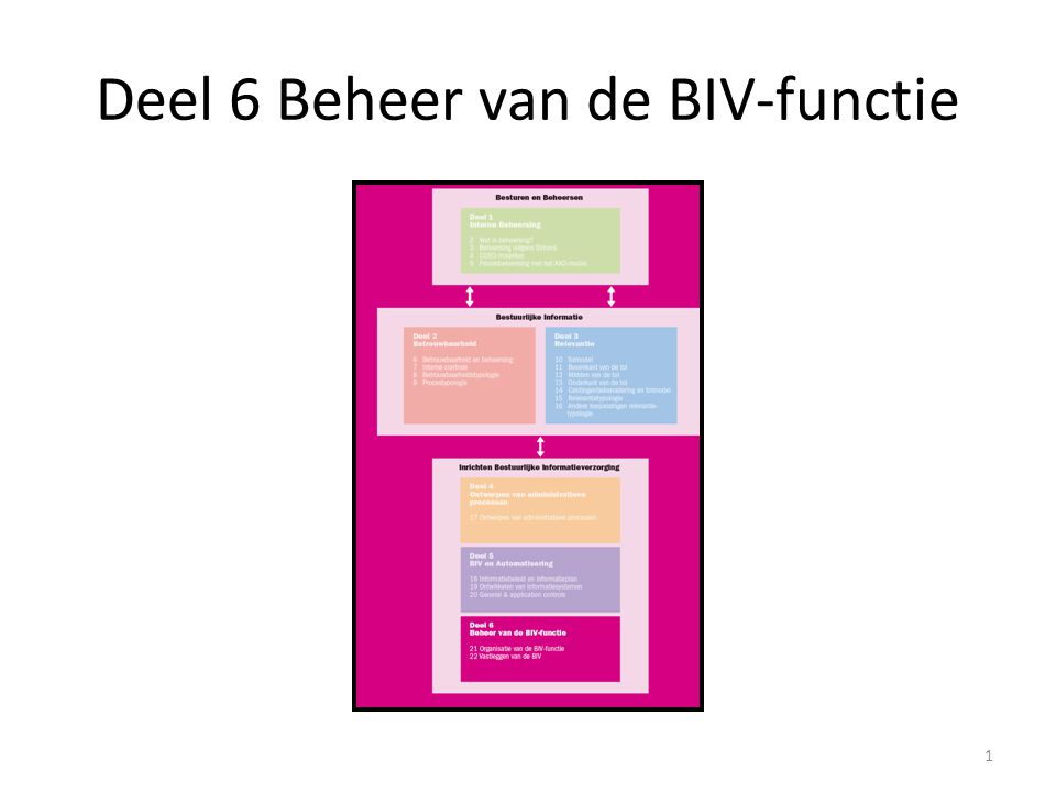 Deel 6 Beheer van de BIV-functie