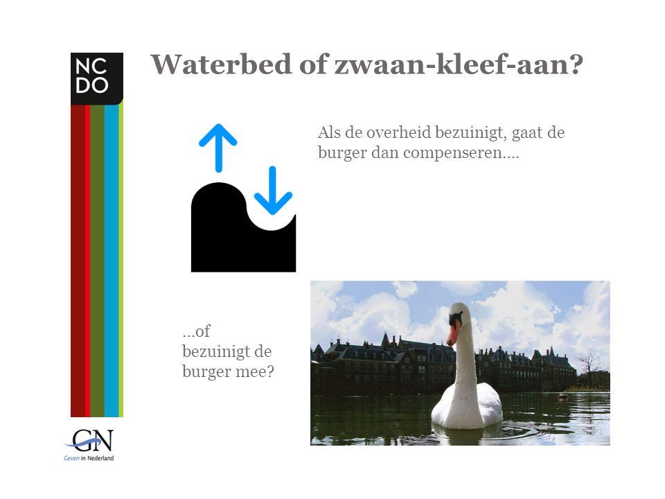 Waterbed of zwaan-kleef-aan