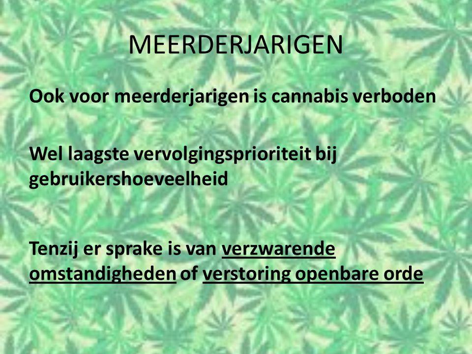 MEERDERJARIGEN Ook voor meerderjarigen is cannabis verboden