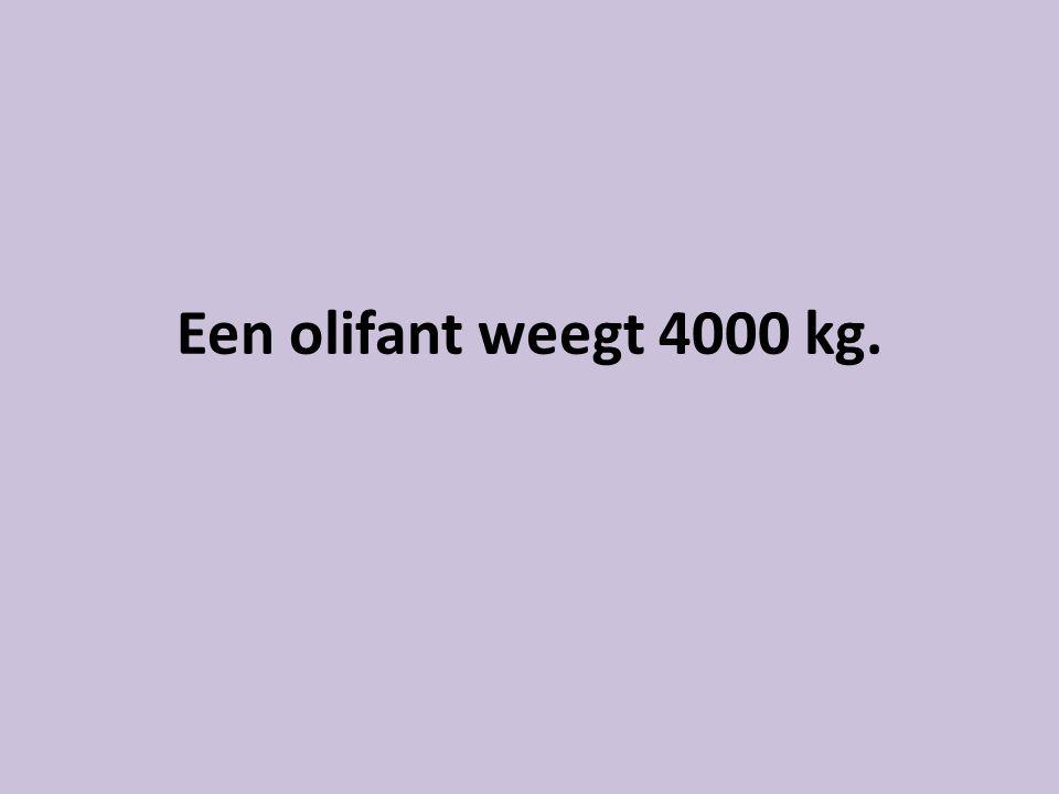 Een olifant weegt 4000 kg.