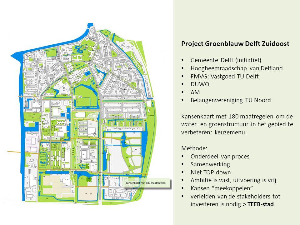 Project Groenblauw Delft Zuidoost