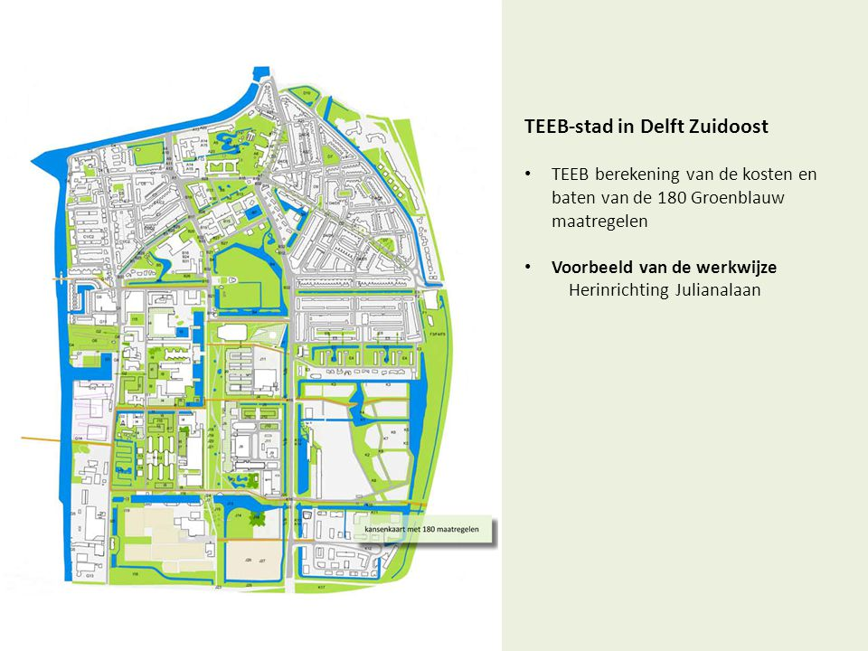 TEEB-stad in Delft Zuidoost