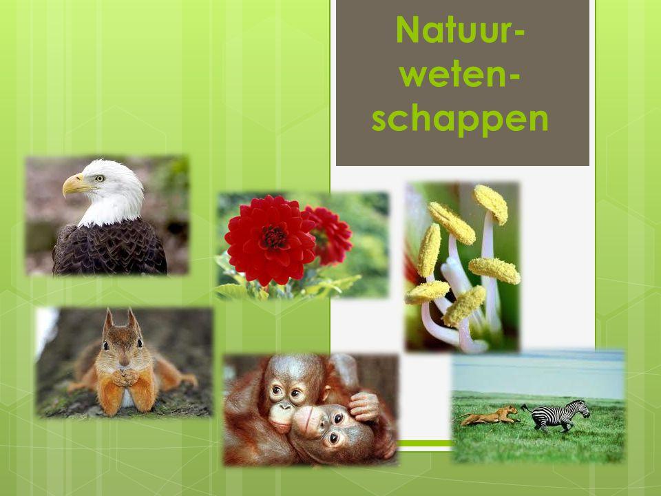 Natuur- weten-schappen