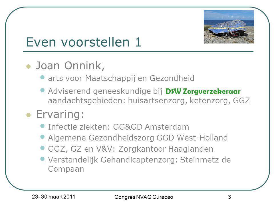 Even voorstellen 1 Joan Onnink, Ervaring: