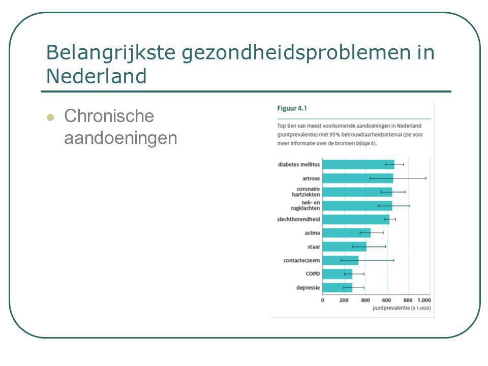 Belangrijkste gezondheidsproblemen in Nederland