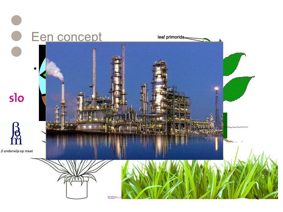 Een concept Teken een plant Teken een plant