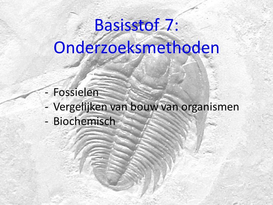 Basisstof 7: Onderzoeksmethoden