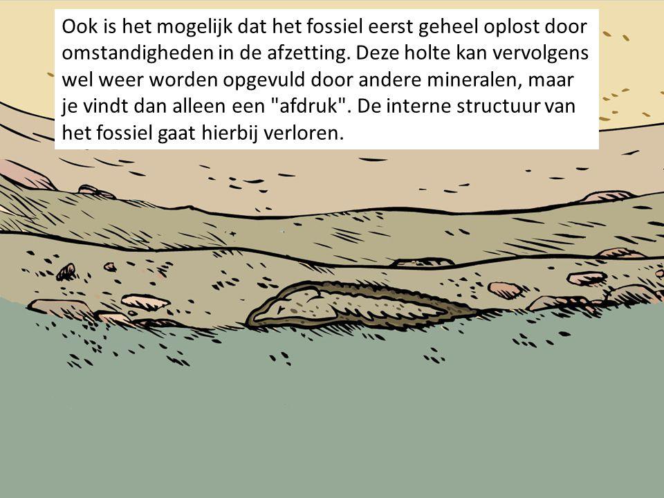 Ook is het mogelijk dat het fossiel eerst geheel oplost door omstandigheden in de afzetting.
