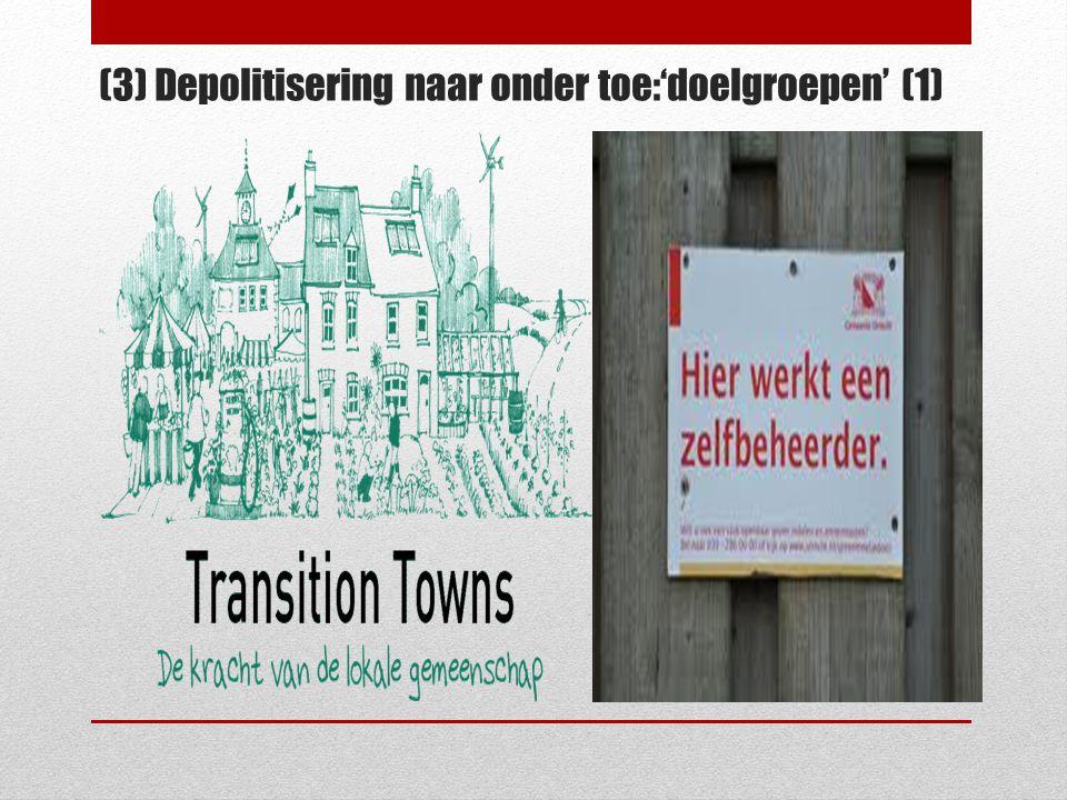(3) Depolitisering naar onder toe:'doelgroepen' (1)