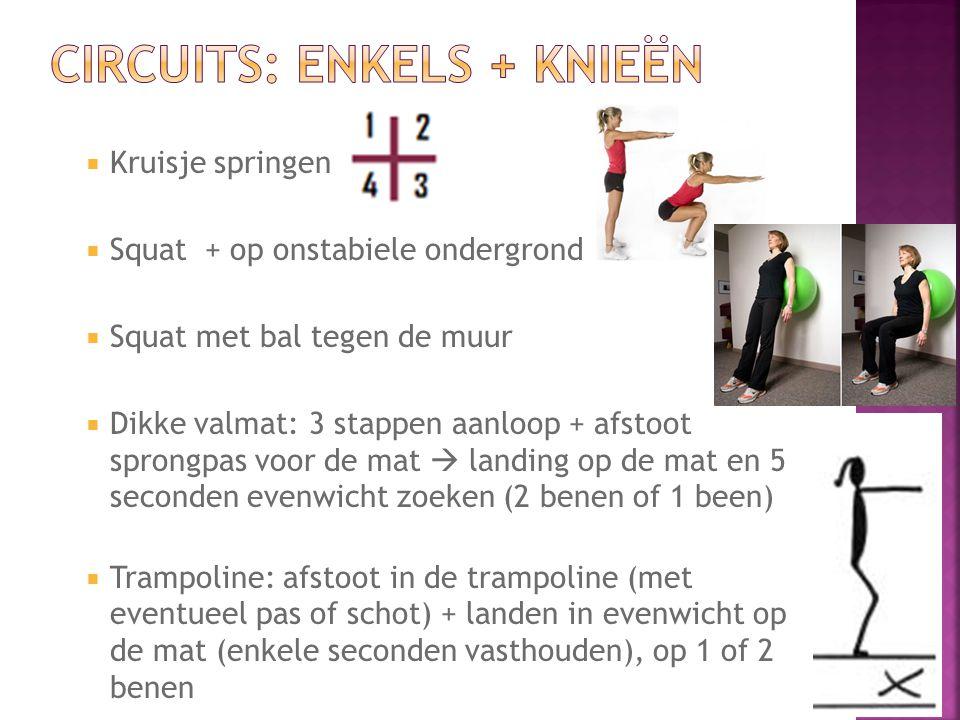 Circuits: Enkels + knieën