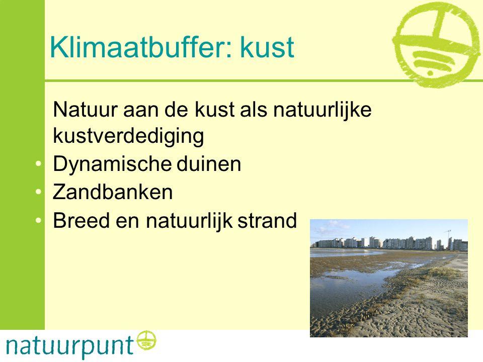 Klimaatbuffer: kust Natuur aan de kust als natuurlijke kustverdediging