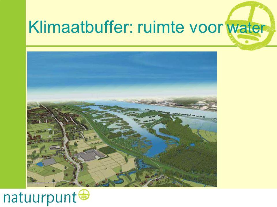 Klimaatbuffer: ruimte voor water