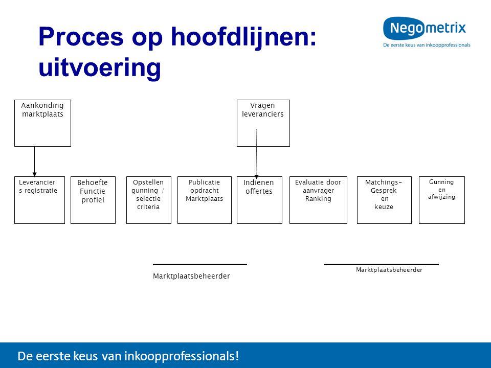 Proces op hoofdlijnen: uitvoering