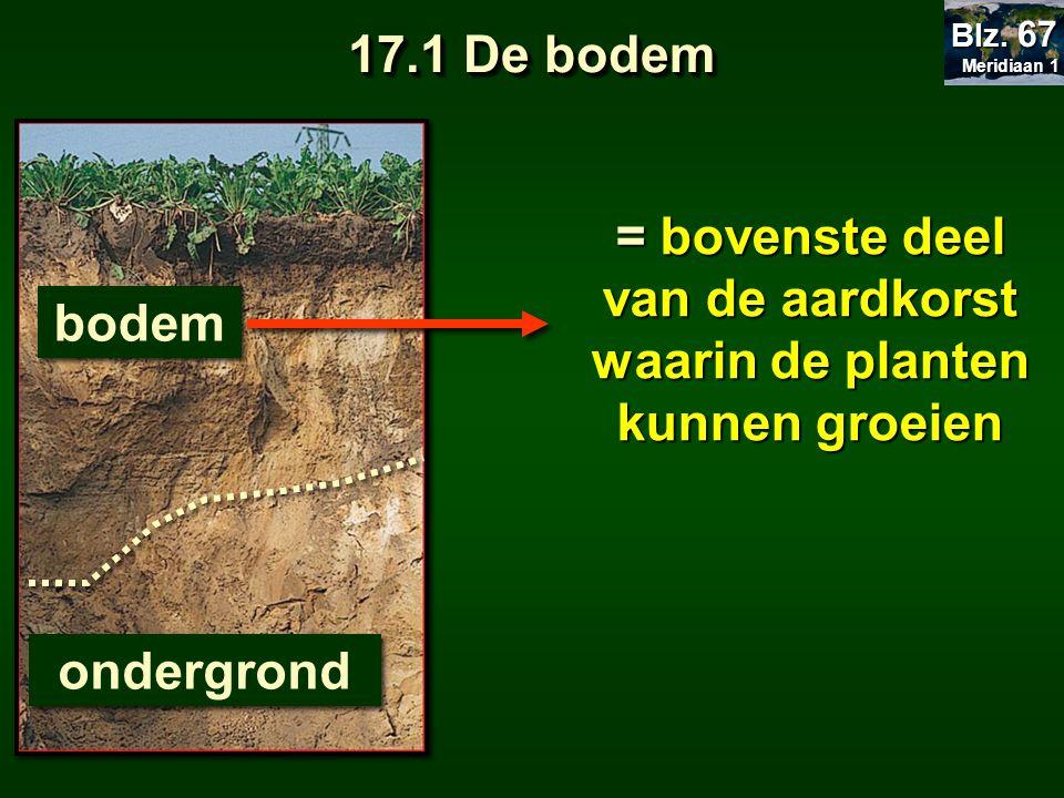= bovenste deel van de aardkorst waarin de planten kunnen groeien