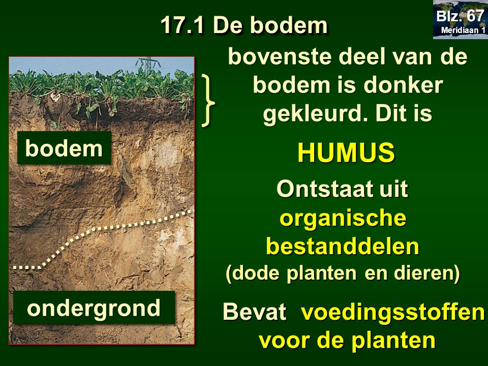 17.1 De bodem Meridiaan 1. Blz. 67. bovenste deel van de bodem is donker gekleurd. Dit is. bodem.