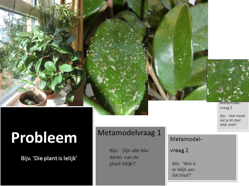 Probleem Metamodelvraag 1 Metamodel- vraag 2